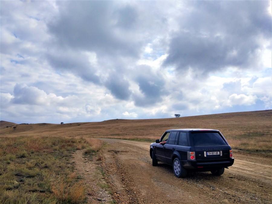 steppe v2